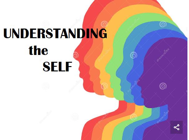 Understanding the Self (11:30 MWF)