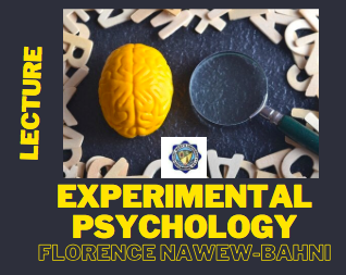 Experimental Psychology (Lecture)