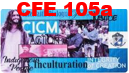 CFE 105a 9:00 TH CICM in Action: Justice, Peace and Integrity of Creation; Indigenous Peoples; Interreligious Dialogu