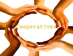 Current Trends & Issues in Cooperative Management (1SEM2021)